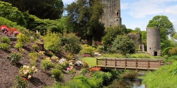 Blarney castle park and bridge